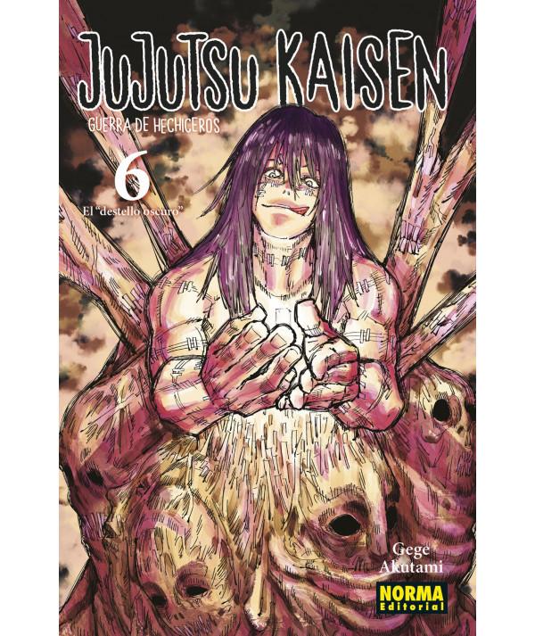 JUJUTSU KAISEN 6 Comic y Manga